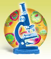 spotart_microscope