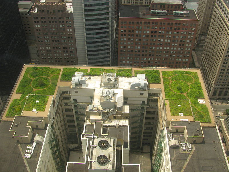 Lesson_Plan_GreenRoof2