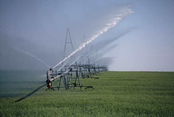 Irrigation1