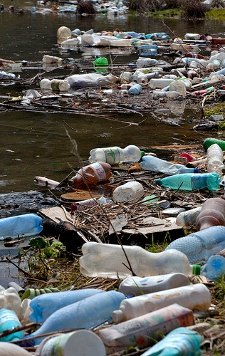 Plastic bottles and garbage on the bank of a river by Horia Varlan (Flickr Commons)