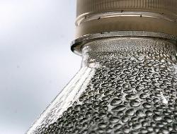 Water Bottle by Muffet