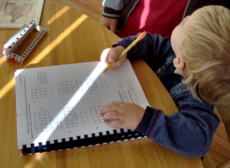 A Young Student Works in a Workbook at Home