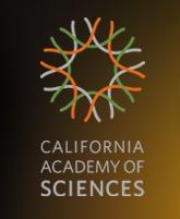 Californa Academy of Sciences