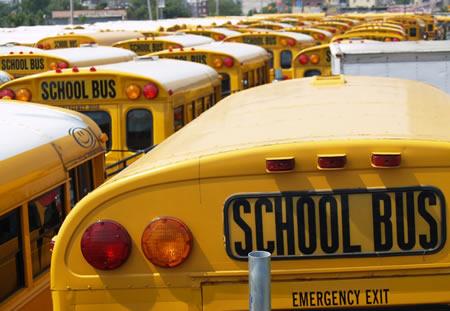 School Buses (Wikimedia Commons)