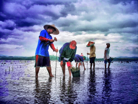 Biodiversity Photo Contest Winner