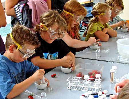 Kids Mash Up Strawberries in Chemistry Activity (Flickr Commons -   dalbera)