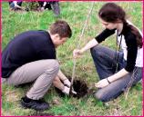 Students Plant Trees