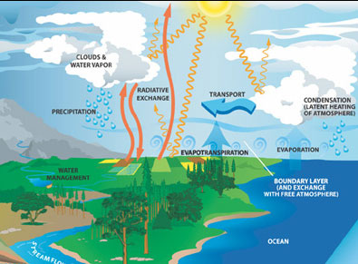 water_cycle.1