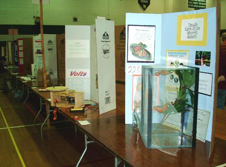 Science Fair Set-up
