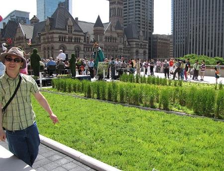 EGFI For Teachers Lesson Design A Green Rooftop Garden