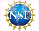 nsf-new