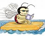 raft bug