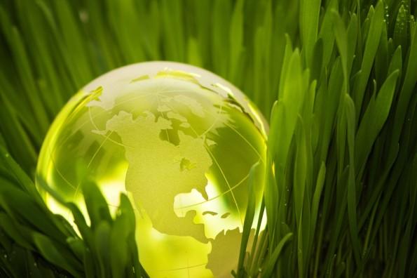 Sustainability green globe