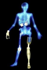 Smithsonian Yorick bionic skeleton