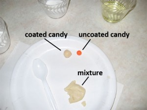 "Figure 2: Coated candy ""pill"" ready to test."