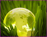 Sustainable green globe
