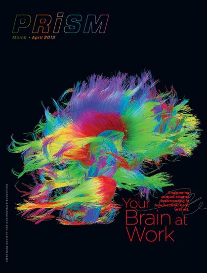Prism brain cover
