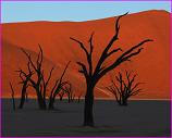 Dead Vlei, Namib Desert