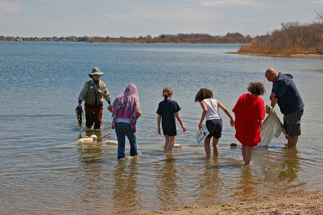 environmental education seining
