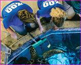 Omaha Zoo Academy