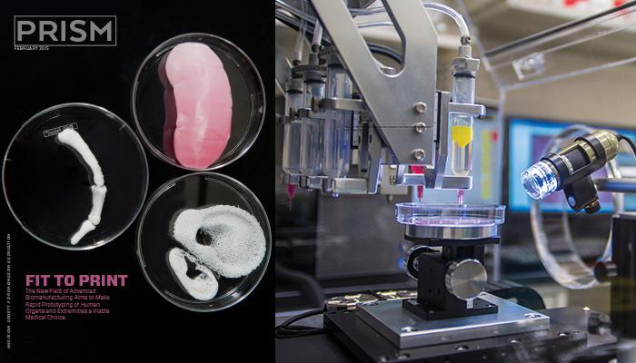 3D Human-Spare-Parts