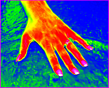 Thermagram hand