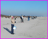 students conducting Cape Hatteras beach profile survey