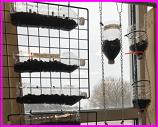 vertical garden class project